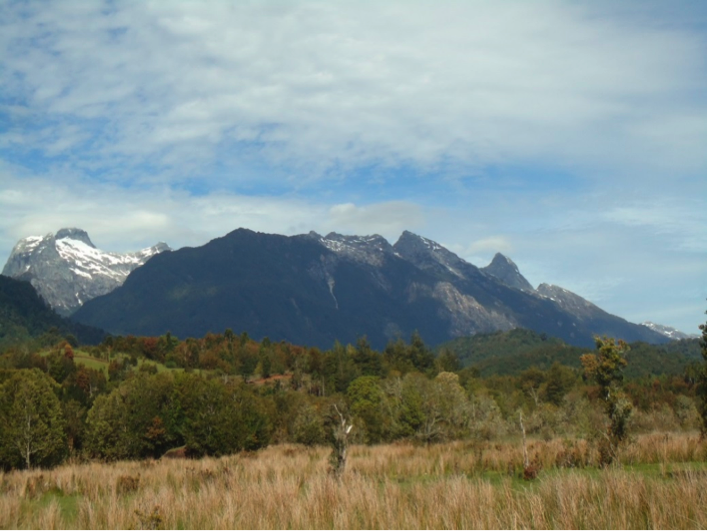 The transition between forest and grassland in Patagonia is controlled by changes in precipitation which are in turn correlated with present-day modes of climate variation such as the Southern Annular model. Photo from Northern Patagonia.